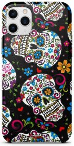 Skull Shell Mexican Colors