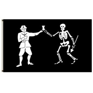 Cool Skeleton Flag