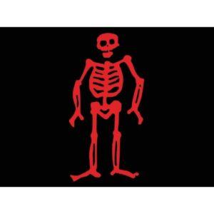 Skeleton Flag