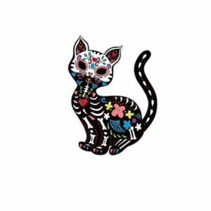 Cat Transfer