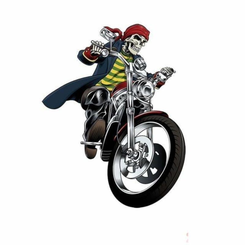 Motorcycle Skeleton Transfer