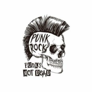 Rock N' Roll Skull Transfer