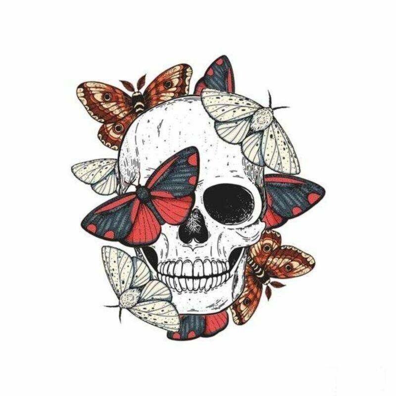 Transfer Skull Butterfly