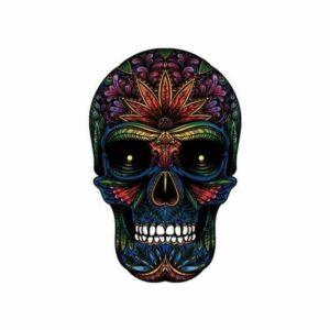 Satanic Skull Transfer