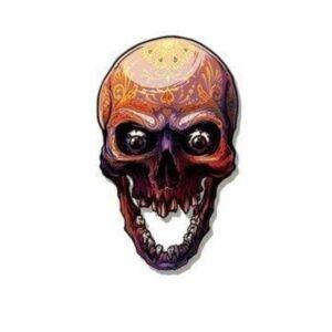 Psychedelic Skull Transfer