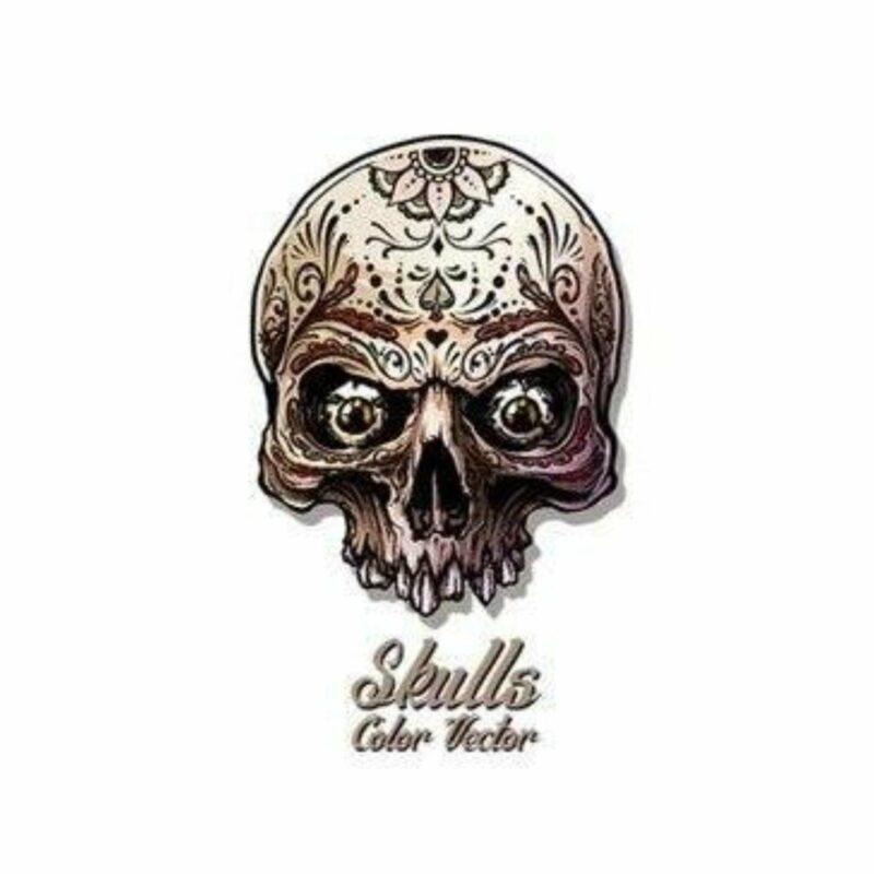 Design Skull Transfer